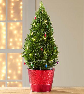 Tinsel Times Holiday Tree