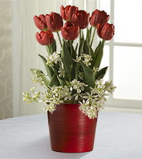 In Full Bloom Valentine's Day Bulb Garden