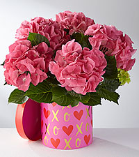 Hopeful Heart Valentine's Day Hydrangea