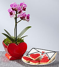 Heart Full of Love Valentine's Day Orchid Plant with Gourmet Sugar Cookies