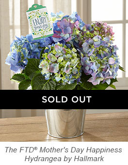 The FTD® Mother's Day Happiness Hydrangea by Hallmark
