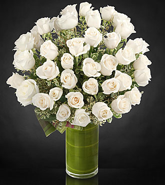 Clarity Luxury Rose Bouquet   24 Inch Premium Long Stemmed Roses