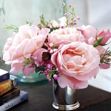 Rose Cups