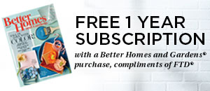 Free 1 Year Subscription