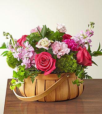 PanierRadiance in Bloom