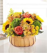 Harvest Sunflower Basket