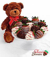 Teddy Bear & Full Dozen Valentine's Strawberries