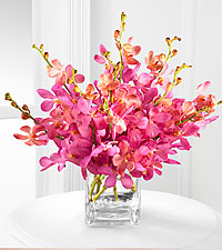 Champagne Mokara Orchid Bouquet - 10 Stems - VASE INCLUDED