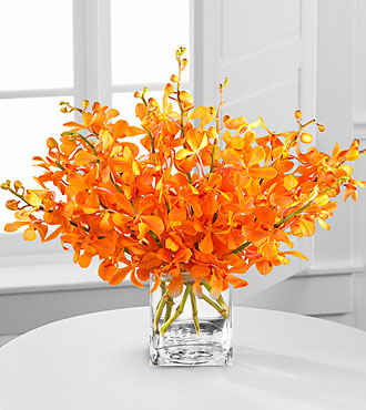 Amber Awakenings Mokara Orchid Bouquet - 10 Stems - VASE INCLUDED