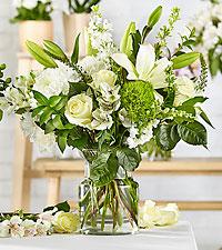 Classic Ivory – A Florist Original