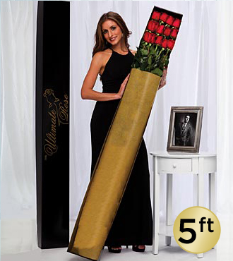 The Ultimate Rose Bouquet - 12 Stems, 5 Foot Roses - No Vase