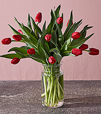 Budding Love Tulip Bouquet