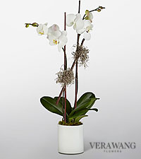 Vera Wang Ivory Enchantment Orchid