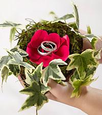Le nid pour bagues Lila Rose™ de FTD®