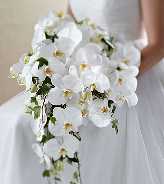 Wedding flower bouquets find bridal bouquets online from ftd the ftd classic white bouquet junglespirit Gallery