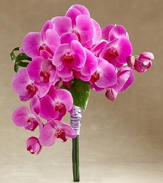Le bouquet Glorious™ de FTD®