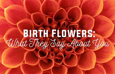 Birth Flowers: What They Say About You