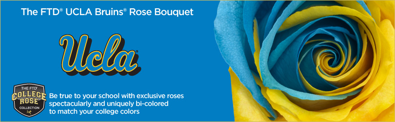 UCLA Bruins Roses - College Rose Collection | FTD