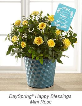 Happy Blessings Birthday Mini Rose