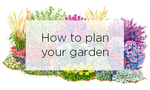 Better homes and gardens garden plans