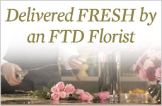 Delivered 