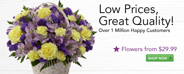 Florist.com - Flowers, Roses, Plants, and Gifts | Florist-Fresh ...