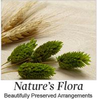 Nature's Flora