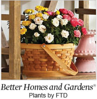 Better Homes and Gardens®