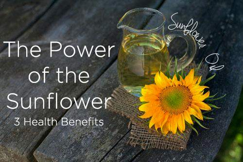 The Power of the Sunflower 3 Health Benefits