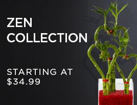 Zen Collection Bamboo & Bonsai