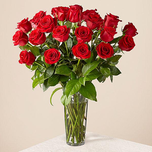 Long Stem Red Rose Bouquet