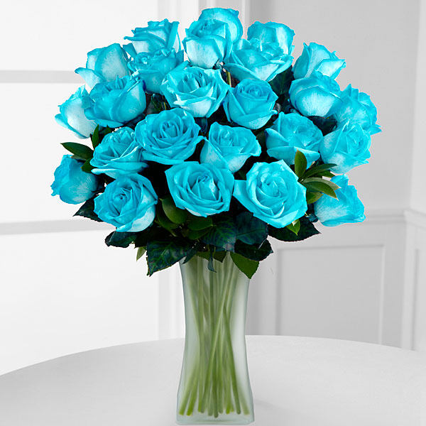 Image gallery teal roses for Where can i buy rainbow roses in the uk