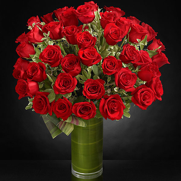 Fate Luxury Rose Bouquet - 48 Stems of 24-inch Premium Long-Stemmed ...