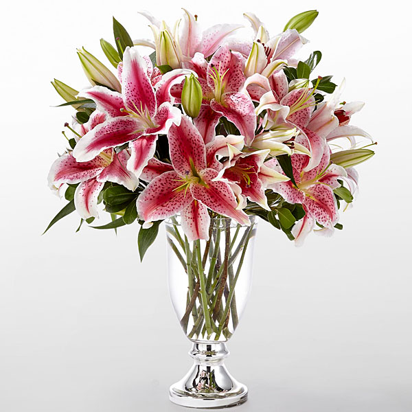 The FTD Stylish Stargazer Bouquet by Vera Wang - VASE INCLUDED